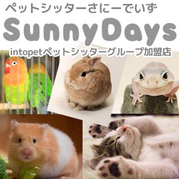 ペットシッター SunnyDays広告